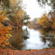 Landscape with wooden river in autumn fo - Stock Photo