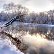 Stock Photo: Winter river 6