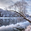 Winter river 2 — Stock Photo