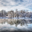 Winter forest river — Stock fotografie