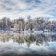 Winter forest river — Stockfoto