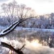 Kış nehir 5 — Stok fotoğraf