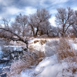 Stock Photo: Winter forest river 3
