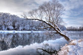 Winter rivier 2 — Stockfoto