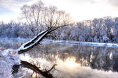 Winter river 5 — Stock Photo