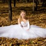 novia sentado en un parque — Foto de Stock