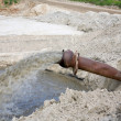 Foto Stock: Dirty water flows from a pipe.