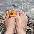 Stock Photo: Suntanned female feet in sewater