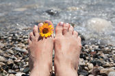 Suntanned female feet in sea water — Stock Photo