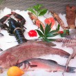 Fresh seafood — Stockfoto