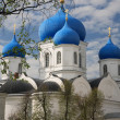 Piously-Bogoljubsky monastery — Stock Photo