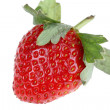 one berry of strawberry on white backgro — Stock Photo