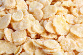 Cornflakes close up — Stock Photo