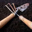 Small rake and shovel — Stock Photo #1122694