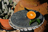 Sundial tangerine — Stock Photo