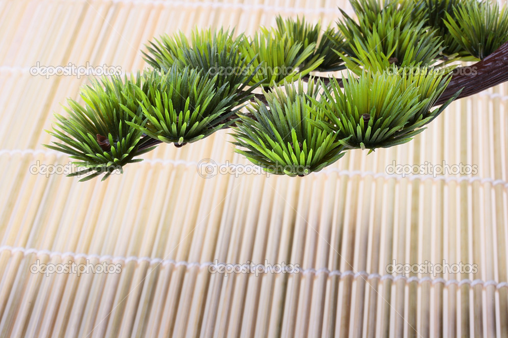 Green branch of the Japanese pine against a bamboo laying. — Stock Photo #1691328