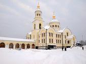 Novo-tihvin kadın manastırı. — Stok fotoğraf
