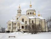 Novo-tikhvin mosteiro feminino. — Foto Stock