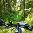 MTB bike coming down the trail. — Stock Photo