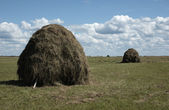 Two haystacks on the meadow — Stock Photo
