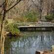Stock Photo: Wooden bridge in Japanese garden