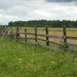 Old wooden fence in the field — Stock Photo #1178974