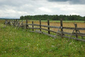Old wooden fence in the field — Stock Photo