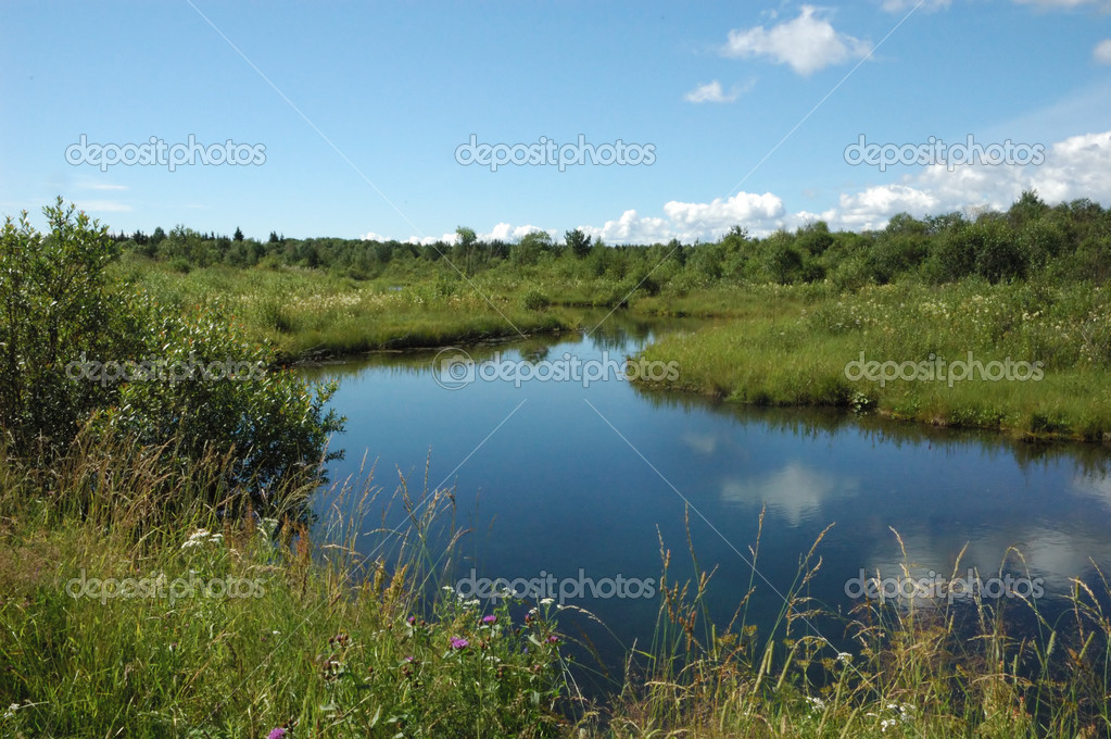 Landscape with calm small river and green meadow  Stock Photo #1181446