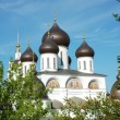 Royalty-Free Stock Photo: Cathedral\'s cupola in Dmitrov