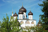 Cathedral's cupola in Dmitrov — Stock Photo