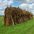 Royalty-Free Stock Photo: Big haystack in the field