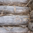 Edge of old log wall — Stock Photo