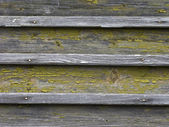 Old chipped wooden background — Stock Photo