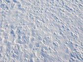 Snow surface background — Stock Photo