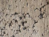 Concrete block texture — Stock Photo