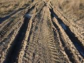 Donmuş toprak yol — Stok fotoğraf