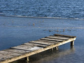 Planked foot way at winter pond — Stock Photo