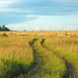 Earth road in the field — Stock Photo