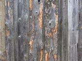 Weathered chipped wooden background — Stock Photo