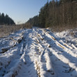 Frozen earth road — Stockfoto