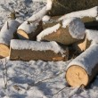 Foto Stock: Pile of firewood