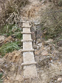 Small wooden footway — Stock Photo