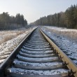 Railway track in winter forest — Stock Photo