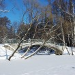 Frozen pond with bridge in winter park - Stock Photo