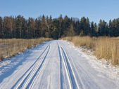 Snowy country road — Stock Photo