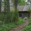 Small wooden hut in forest - Stock Photo