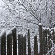 Old wooden fence with snow — Stock Photo