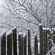 Old wooden fence with snow — Stock Photo #1493877