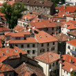 Stock Photo: Red roofs