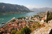 Kotor city — Stock Photo